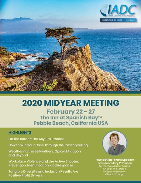 2020_Midyear_Meeting_Brochure